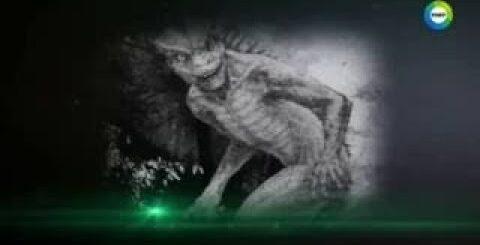 Страшное чудовище из глубины тихого океана Ужас для водолазов 10 07 2017