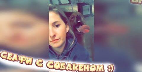 ЛУЧШИЕ ПРИКОЛЫ 2017 СЕНТЯБРЬ | Лучшая Подборка Приколов #112