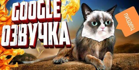 СМЕШНАЯ GOOGLE ОЗВУЧКА. Смешные коты. Видео приколы. Собака ругается с кошкой. Ржачная озвучка маты