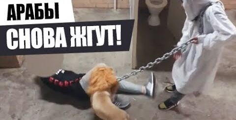 СТРАШНЫЕ ПРИКОЛЫ над ЛЮДЬМИ! 2018 Подборка приколов #35