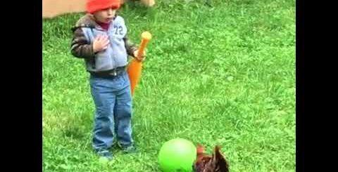 Петух Отомстил! Приколы с Детьми! / Rooster revenge! Fun with the kids! Xoruzlar ve usaqlar..