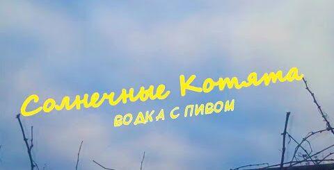 Солнечные Котята - Водка с пивом (Official Video)