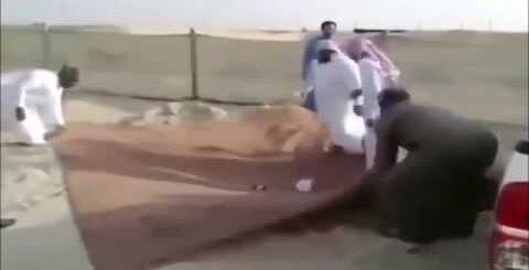 Арабские приколы  Вы таких ещё не видели