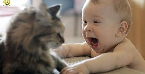 Приколы с детьми 2017 Подборка приколов с детьми Смешные видео детей #8   Приколы Jokes Funny Video