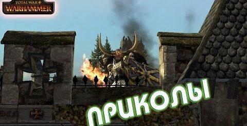ПРИКОЛЫ Warhammer Total War