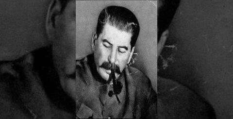 Домик в Гори (1939) документальный фильм