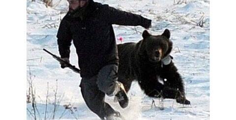 Приколы охотников на медведя  Часть 5