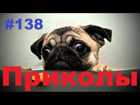 ЛУЧШИЕ ПРИКОЛЫ 2019 Декабрь #138 Ржач до слез, угар, приколы - ПРИКОЛЮХА ХАХАХА